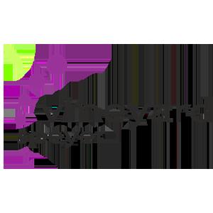 vineyard-speyer-logo